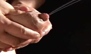 Japanese Tits Milking
